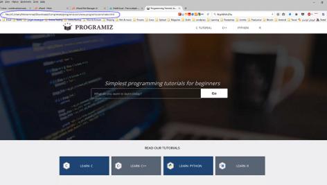 نسخه آفلاین سایت Programiz.com